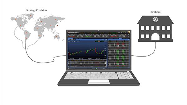 Forex Trading | Cos'è il Forex e come funziona | IG Bank